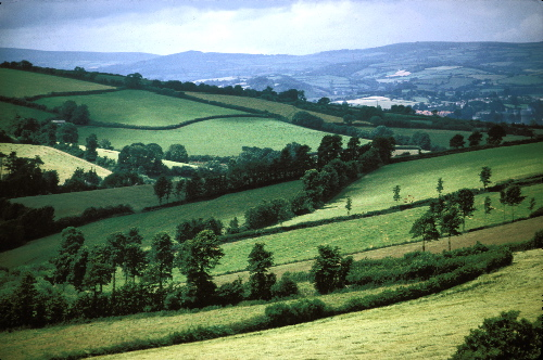 The Devonshire countryside that Tally falls in love with